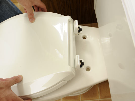 Replace Toilet Seat London From Homemates